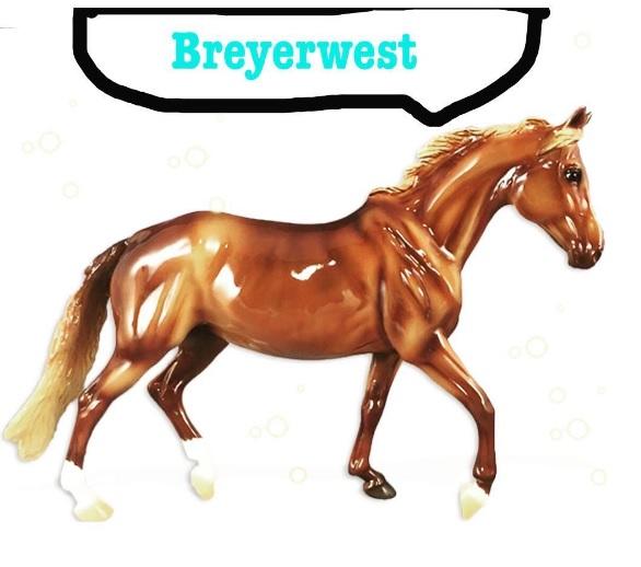 breyerwest